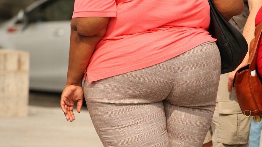 obésité française
